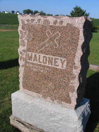 MALONEY, FAMILY STONE - Linn County, Iowa | FAMILY STONE MALONEY