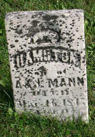 MANN, HAMILTON - Linn County, Iowa | HAMILTON MANN