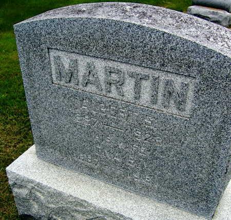MARTIN, ALBERT S. - Linn County, Iowa   ALBERT S. MARTIN
