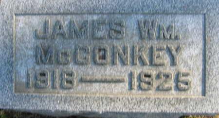 MCCONKEY, JAMES WM - Linn County, Iowa | JAMES WM MCCONKEY