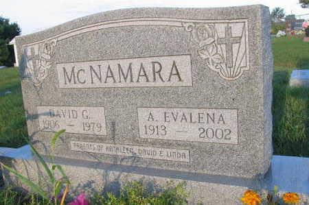 MCNAMARA, A. EVALENA - Linn County, Iowa | A. EVALENA MCNAMARA