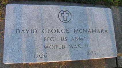 MCNAMARA, DAVID GEORGE - Linn County, Iowa | DAVID GEORGE MCNAMARA