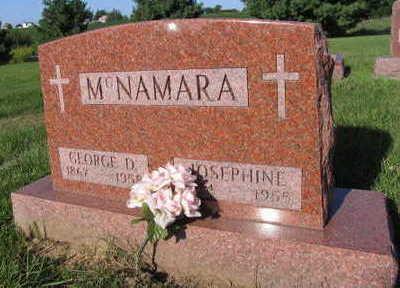 MCNAMARA, GEORGE D. - Linn County, Iowa | GEORGE D. MCNAMARA