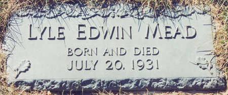 MEAD, LYLE EDWIN - Linn County, Iowa | LYLE EDWIN MEAD