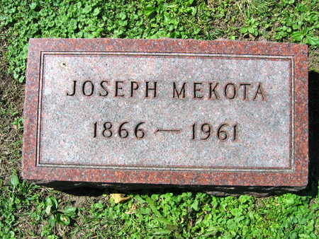 MEKOTA, JOSEPH - Linn County, Iowa | JOSEPH MEKOTA