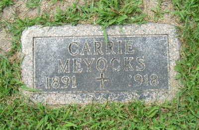 YUNKER MEYOCKS, CARRIE - Linn County, Iowa | CARRIE YUNKER MEYOCKS
