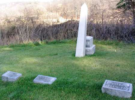 MIELL, FAMILY PLOT - Linn County, Iowa | FAMILY PLOT MIELL