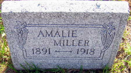 MILLER, AMALIE - Linn County, Iowa   AMALIE MILLER