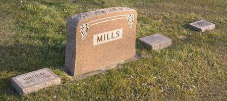 MILLS, FAMILY STONE - Linn County, Iowa | FAMILY STONE MILLS