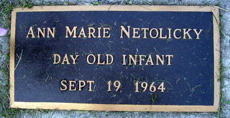 NETOLICKY, ANN MARIE - Linn County, Iowa | ANN MARIE NETOLICKY