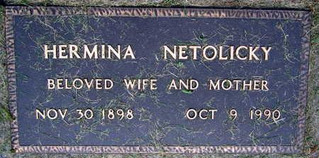 NETOLICKY, HERMINA - Linn County, Iowa | HERMINA NETOLICKY