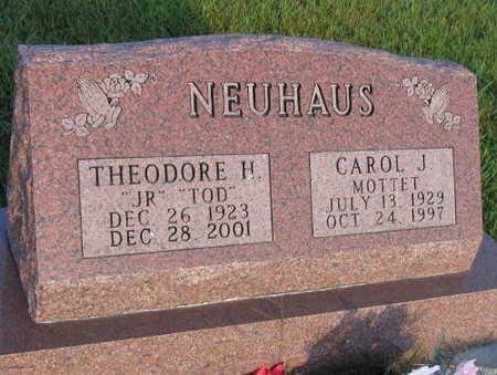 NEUHAUS, THEODORE H. - Linn County, Iowa | THEODORE H. NEUHAUS