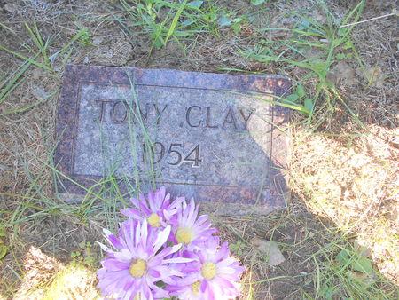 NIETERT, TONY CLAY - Linn County, Iowa | TONY CLAY NIETERT