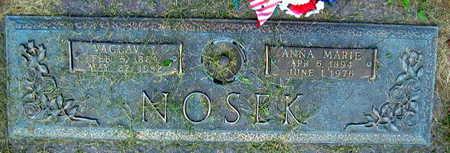 NOSEK, VACLAV - Linn County, Iowa   VACLAV NOSEK