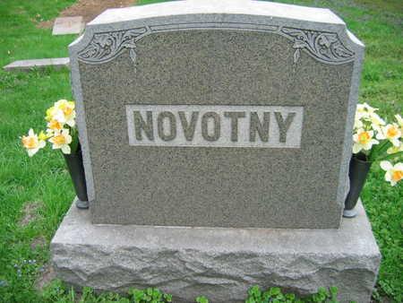 NOVOTNY, FAMILY STONE - Linn County, Iowa   FAMILY STONE NOVOTNY