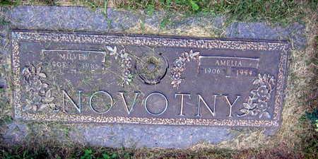 NOVOTNY, AMELIA - Linn County, Iowa | AMELIA NOVOTNY
