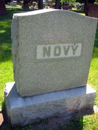 NOVY, FAMILY STONE  (NOVY KRAL) - Linn County, Iowa   FAMILY STONE  (NOVY KRAL) NOVY