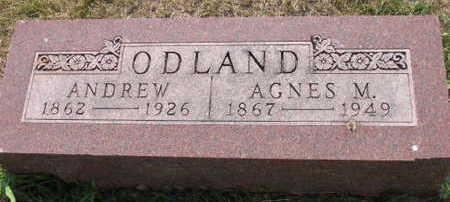 ODLAND, AGNES M. - Linn County, Iowa | AGNES M. ODLAND