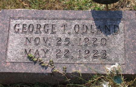ODLAND, GEORGE T. - Linn County, Iowa | GEORGE T. ODLAND