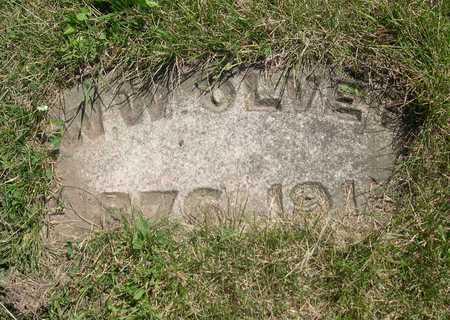 OLVER, W. W. - Linn County, Iowa | W. W. OLVER