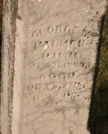 PALMER, GEORGE W. - Linn County, Iowa   GEORGE W. PALMER