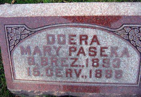 PASEKA, MARY - Linn County, Iowa | MARY PASEKA