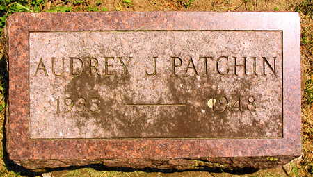 PATCHIN, AUDREY J. - Linn County, Iowa | AUDREY J. PATCHIN