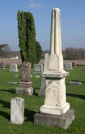 PAUL, FAMILY PLOT - Linn County, Iowa | FAMILY PLOT PAUL