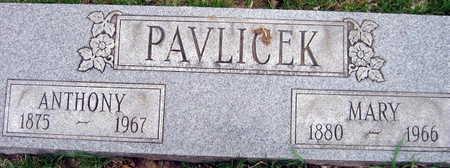 PAVLICEK, ANTHONY - Linn County, Iowa | ANTHONY PAVLICEK