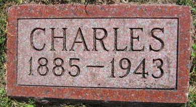 PAVLICEK, CHARLES - Linn County, Iowa | CHARLES PAVLICEK
