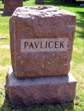 PAVLICEK, FAMILY STONE - Linn County, Iowa   FAMILY STONE PAVLICEK