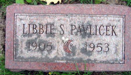 PAVLICEK, LIBBIE S. - Linn County, Iowa | LIBBIE S. PAVLICEK