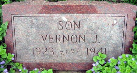 PAVLICEK, VERNON J. - Linn County, Iowa | VERNON J. PAVLICEK
