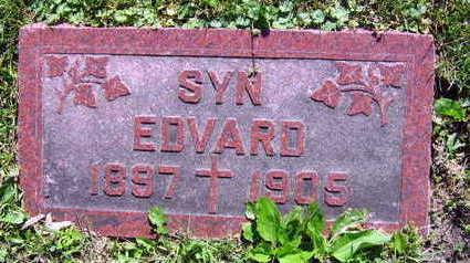 PAVLIS, EDVARD - Linn County, Iowa | EDVARD PAVLIS