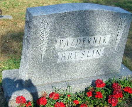 PAZDERNIK  BRESLIN, FAMILY STONE - Linn County, Iowa | FAMILY STONE PAZDERNIK  BRESLIN