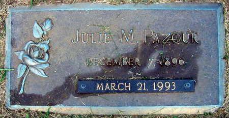 PAZOUR, JULIE M. - Linn County, Iowa | JULIE M. PAZOUR