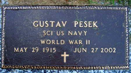 PESEK, GUSTAV - Linn County, Iowa | GUSTAV PESEK