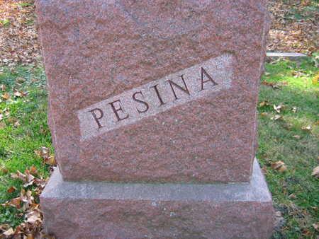 PESINA, FAMILY STONE - Linn County, Iowa   FAMILY STONE PESINA