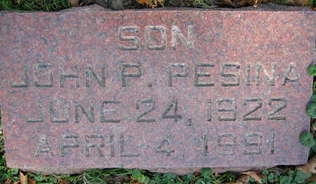 PESINA, JOHN P. - Linn County, Iowa | JOHN P. PESINA