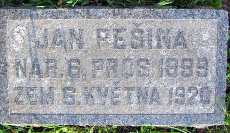 PESINA, JAN - Linn County, Iowa | JAN PESINA