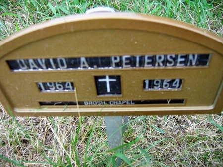 PETERSEN, DAVID A. - Linn County, Iowa   DAVID A. PETERSEN