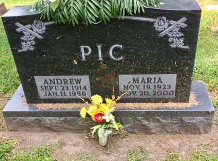 PIC, ANDREW - Linn County, Iowa | ANDREW PIC