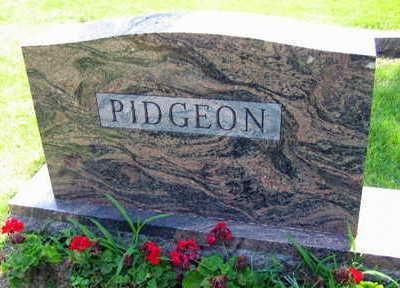 PIDGEON, FAMILY STONE - Linn County, Iowa | FAMILY STONE PIDGEON