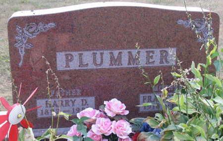 PLUMMER, HARRY D. - Linn County, Iowa | HARRY D. PLUMMER