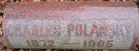 POLANSKY, CHARLES - Linn County, Iowa | CHARLES POLANSKY