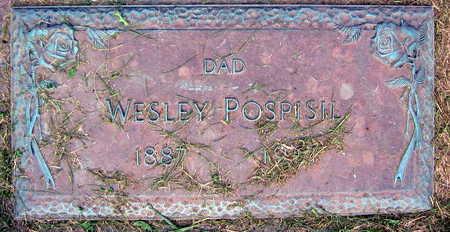 POSPISIL, WESLEY - Linn County, Iowa | WESLEY POSPISIL