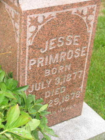 PRIMROSE, JESSE - Linn County, Iowa   JESSE PRIMROSE