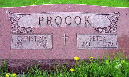 PROCOK, CHRISTINA - Linn County, Iowa | CHRISTINA PROCOK