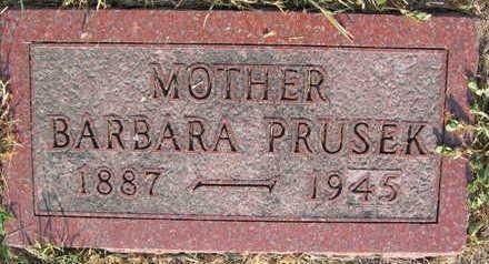 PRUSEK, BARBARA - Linn County, Iowa | BARBARA PRUSEK