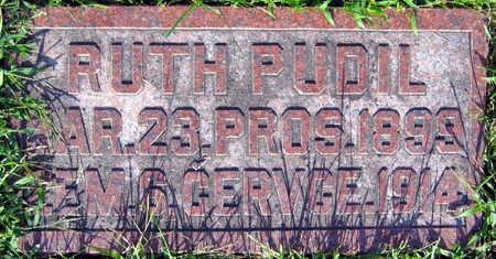 PUDIL, RUTH - Linn County, Iowa | RUTH PUDIL